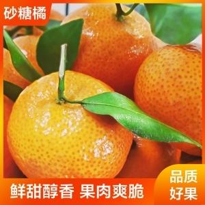 砂糖橘8.88元3斤 惠民平台【自营】